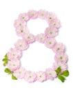 Roze bloemen in een vorm van nummer acht Stock Afbeeldingen