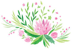 Roze bloemen en verse groene bladerenvector Stock Foto's