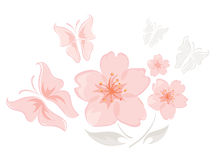 Roze bloemen met vlinders stock illustratie