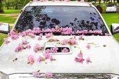 Roze bloemen op de bonnet stock fotografie