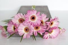 Roze bloemen op witte achtergrond Stock Fotografie