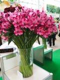 Roze bloemen in vaas Royalty-vrije Stock Afbeelding