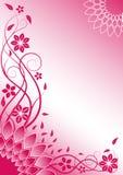 Roze bloemen vectorachtergrond Stock Foto's