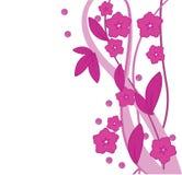 Roze bloemenachtergrond vector illustratie