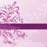 Roze bloemenachtergrond met banner Stock Afbeelding