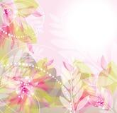 Roze bloemenillustratie als achtergrond Royalty-vrije Stock Afbeelding