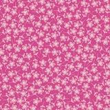 Roze bloemenpatroon Royalty-vrije Stock Fotografie
