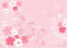 Roze bloemensakura stock illustratie