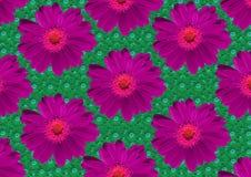 Roze bloementextuur Stock Afbeeldingen