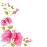 Roze bloemenvector Royalty-vrije Stock Fotografie