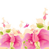 Roze bloemenvector Royalty-vrije Stock Foto