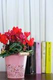 Roze bloempot en boeken bij de achtergrond Stock Foto