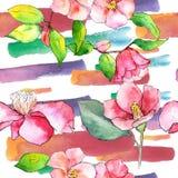 Roze Camelia Bloemen botanische bloem Naadloos patroon als achtergrond stock illustratie
