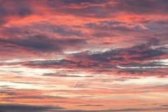 Roze Cloudscape Stock Afbeelding