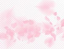 Roze dalende de bloemblaadjes vector transparante achtergrond van de sakurabloem 3D romantische illustratie van de valentijnskaar stock illustratie