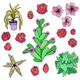 Roze de rozenboeketten van de schetskrabbel royalty-vrije stock afbeelding
