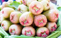 Roze djamboevruchten Royalty-vrije Stock Afbeelding