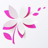 Roze document de kaartmalplaatje van de bloem vectorgroet Royalty-vrije Stock Afbeelding