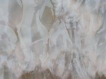 Roze dode die kwallen met bezinning over zand op het strand, als achtergrond en textuur wordt gebruikt Royalty-vrije Stock Fotografie