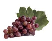 Roze druiven met bladeren Stock Fotografie