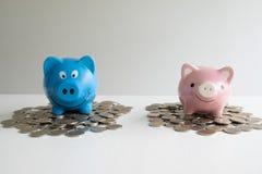 Roze en blauw de besparingsgeld van twee spaarvarken met muntstukkenstapel stock foto's