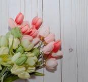 Roze en groene tulpen met een witte achtergrond Stock Fotografie