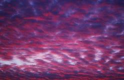 Roze en purpere hemel Stock Afbeelding