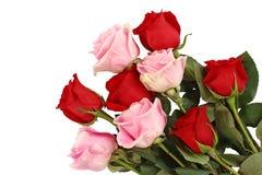 Roze en rode rozen Stock Foto