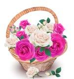 Roze en roomrozen in een mandvector Mooi realistisch bloemendecor De verse natuurlijke samenstelling van de de lentezomer royalty-vrije illustratie