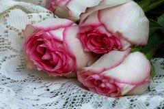 Roze en witte rozen stock foto