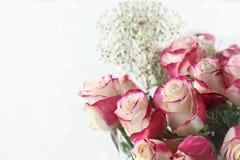 Roze en Witte Rozen met Babys-Adem Stock Foto's