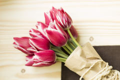 Roze en witte tulpen Royalty-vrije Stock Fotografie