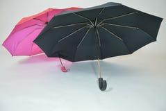 Roze en zwarte paraplu's op een witte achtergrond - liefde De stemming van de herfst Vele roze en magenta asters Het seizoen van  Royalty-vrije Stock Afbeeldingen