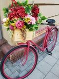 Roze fiets met bloemdoos Royalty-vrije Stock Afbeelding