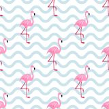Roze flamingo naadloos patroon Vector illustratie vector illustratie