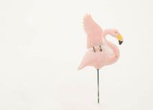 Roze flamingo in sneeuw Stock Afbeeldingen