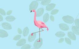 Roze flamingovogel over blauwe achtergrond Stock Fotografie