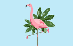 Roze flamingovogel over blauwe achtergrond Stock Foto