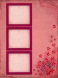 Roze fotoframes Royalty-vrije Stock Foto's