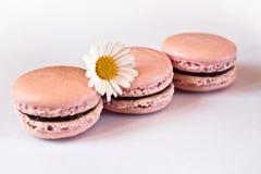 Roze Franse macarons in rij Stock Foto's