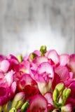 Roze fresiabloemen op houten achtergrond Stock Foto's