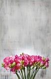 Roze fresiabloemen op houten achtergrond Royalty-vrije Stock Fotografie