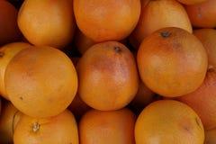 Roze Grapefruit Royalty-vrije Stock Foto