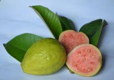 Roze guave Royalty-vrije Stock Foto's
