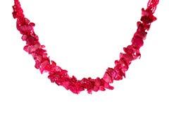 Roze Halsband Royalty-vrije Stock Afbeeldingen