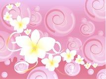 Roze Hawaiiaanse buitensporige achtergrond Stock Fotografie