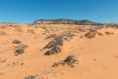 Roze het zandduinen van het koraal Royalty-vrije Stock Foto