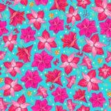 Roze hippeastrumbloemen op blauwe achtergrond Naadloos patroon Hand getrokken vector royalty-vrije illustratie
