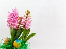 Roze hyacinten en paaseieren Stock Afbeeldingen