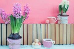 Roze hyacinten, makarons, theekoppen en witte hyacinten dichtbij pil Stock Foto's